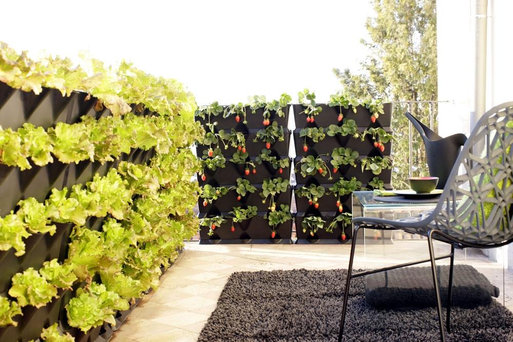 Выращивание овощей: домашний огород - минимум хлопот - земля.